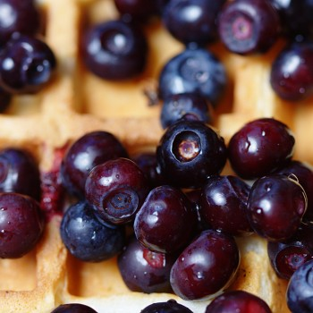 Fresh Huckleberry Waffles